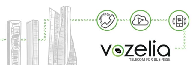 Servicios VoIP para empresas con Vozelia