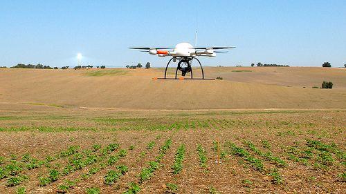 Drones, un sector con futuro
