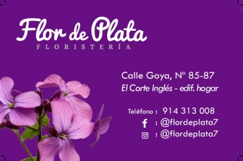 Flor de Plata