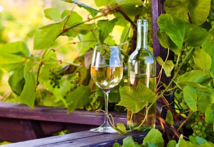 13 mitos y propiedades del vino blanco