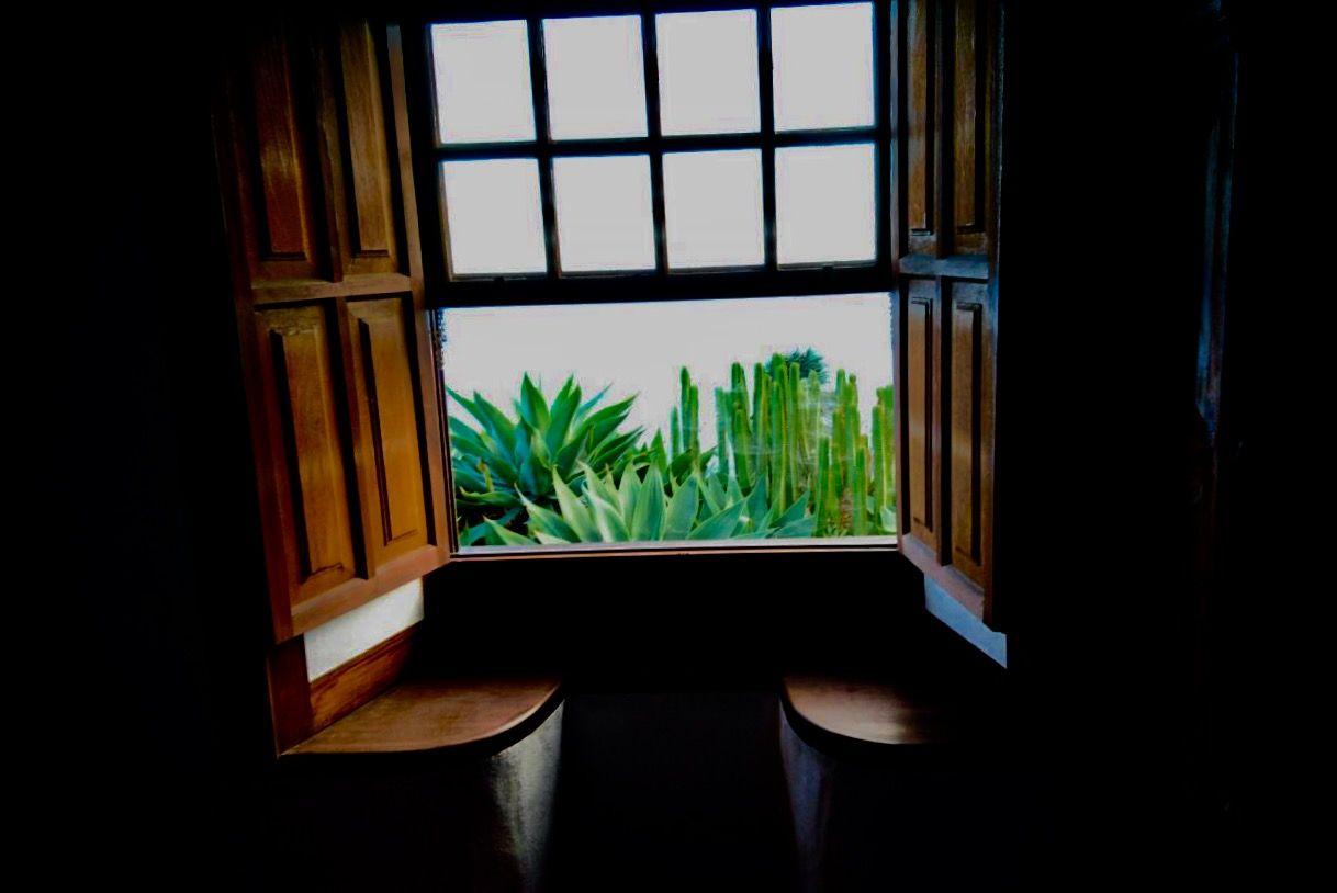 Fotografia Detalle típico palmero