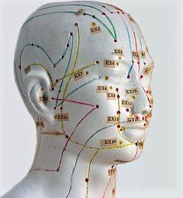 Yamamoto New Scalp Acupuncture Craneopuntura del Dr. Yamamoto, con el Dr. Hans Ogal