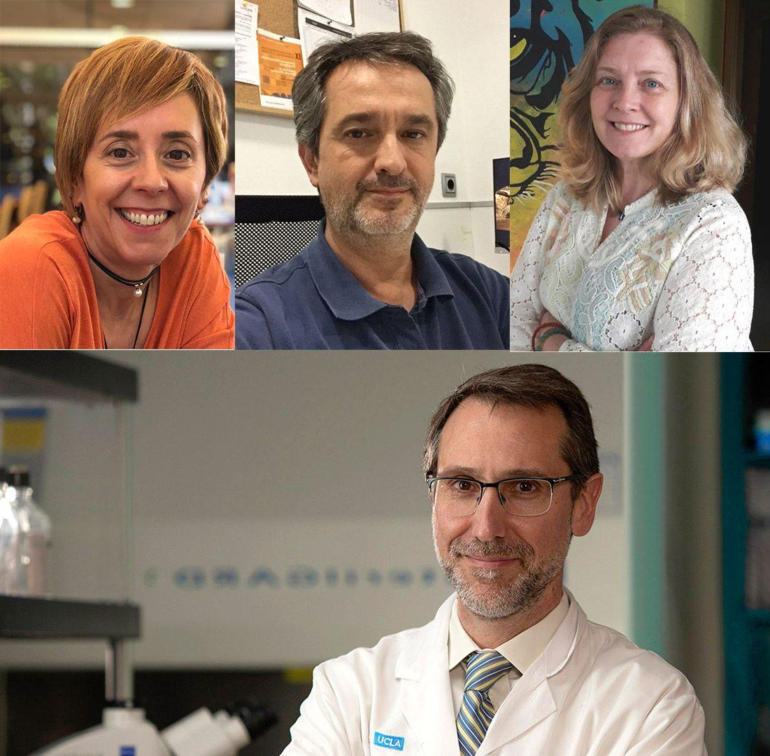 Baleares, Canarias, País Vasco y Levante concentran la mayor mortalidad en melanoma