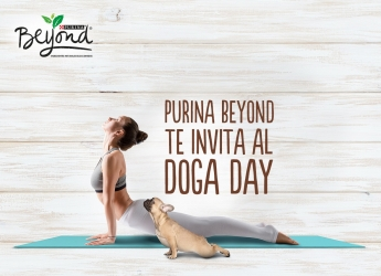Beyond Doga Day