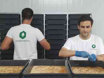 Técnicos Proteinsecta trabajando en una granja de insectos