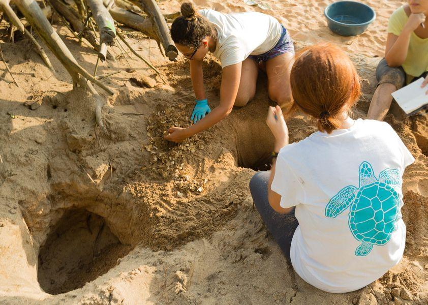 Camisetas.com: el crowdfunding solidario se consolida como principal herramienta para recaudar fondos