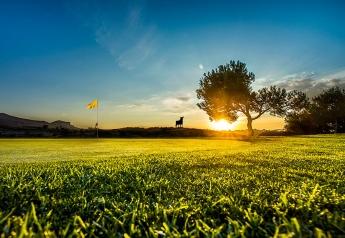 Foto de Alenda golf