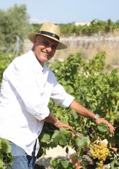 Foto de Ximo Cabrera y su cosecha de Moscatel de Alejandría