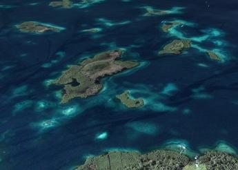 Isla Blue Dolphin - Caribbean Nature