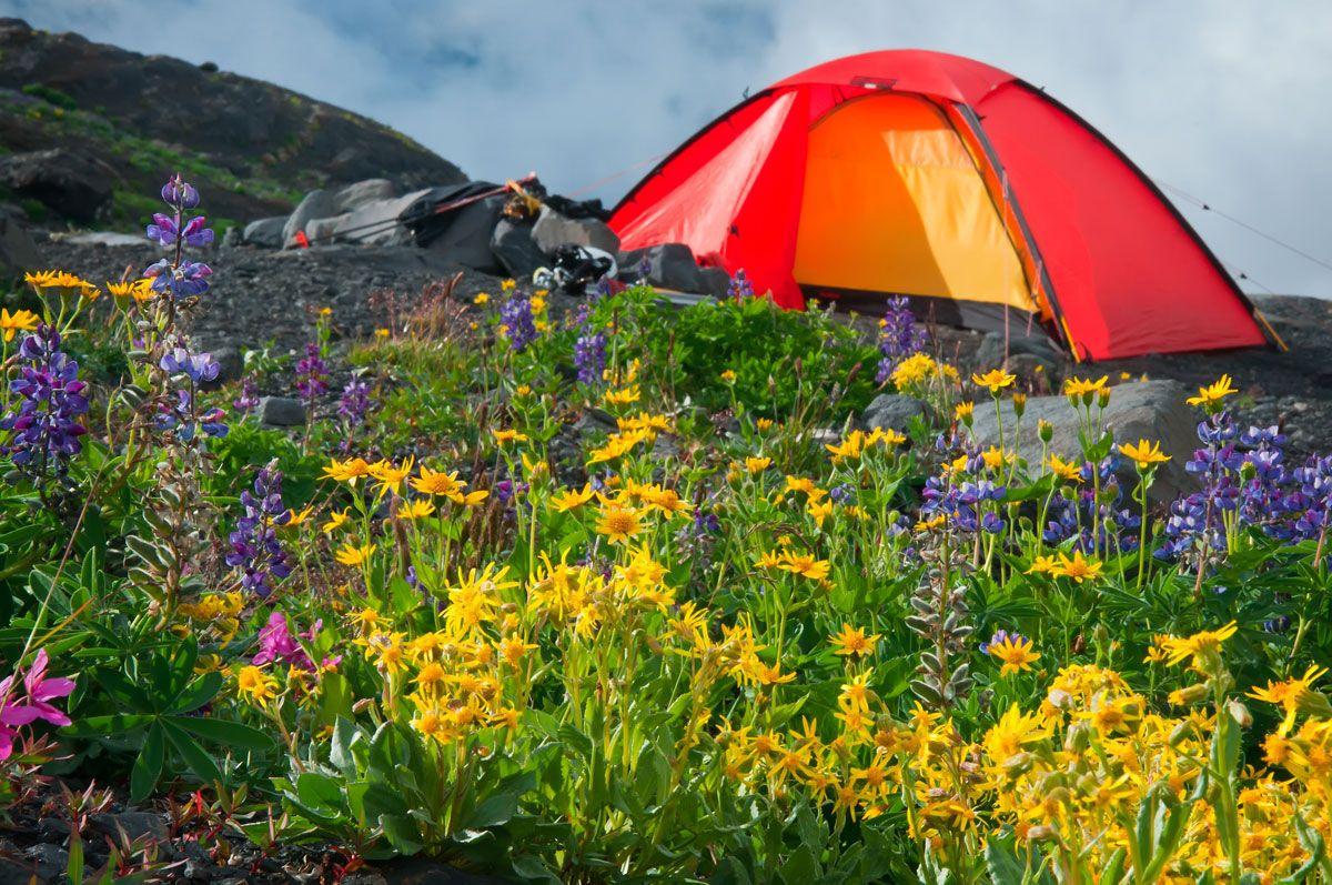 Foto de Los campamentos de Semana Santa: una opción diferente para