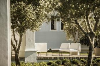 Foto de Un conjunto de olivares configuran una preciosa y sombreada