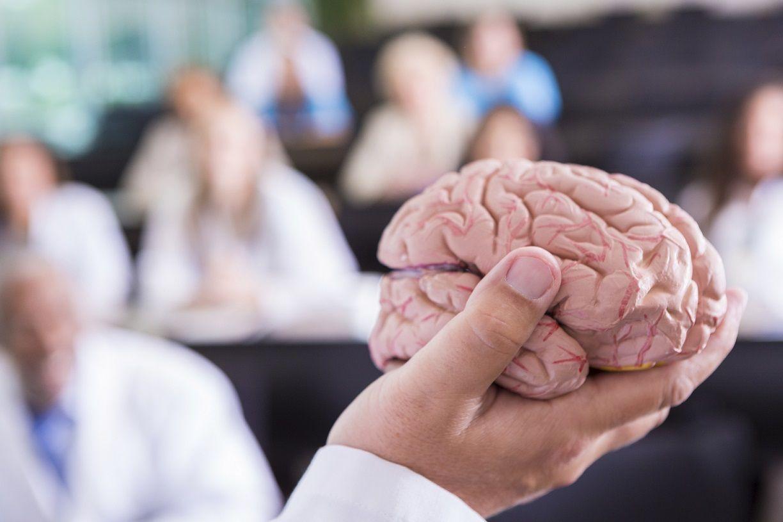 Foto de Master Neuropsicopedagogía ISPEDUC