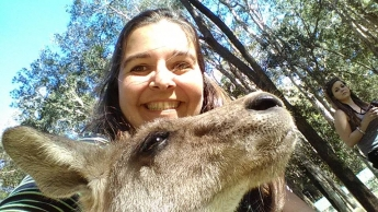 Selfie canguro