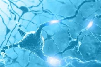 Recuperaión Neuronal TAVAD