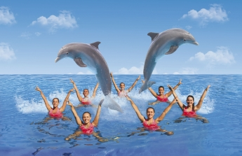 Mundomar estrena su nuevo espectáculo de natación sincronizada con delfines