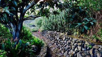 Cuatro de cada 10 turistas de La Palma repiten su visita