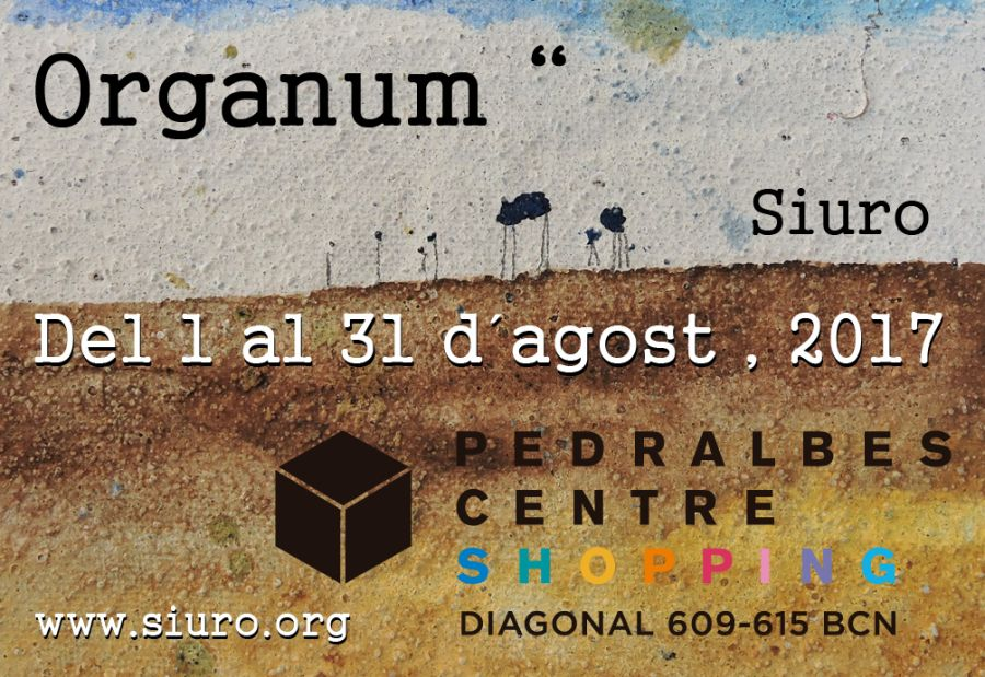 Foto de Exposició Pedralbes Centre 'Organum' Siuro