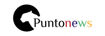 Buscador de noticias Puntonews.com