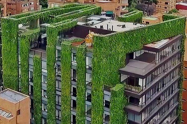 Paisajismo urbano la empresa espa ola que bate r cords for Edificios con jardines verticales
