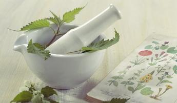 Las profesiones que buscan la vuelta a lo natural: Herbodietética y Naturopatía