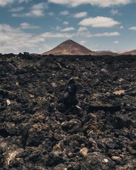 Islas Canarias, el paraíso donde fundirse con la naturaleza es posible