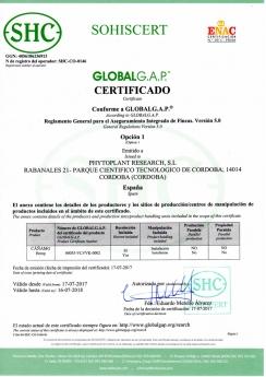 certificación de GLOBALG.A.P. para la producción de Cannabis medicinal