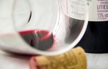 Euroinnova destaca y fomenta la cultura vinícola