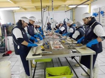 Bideratu pone en marcha dos cursos sobre carnicería y pescadería con un elevado índice de colocación