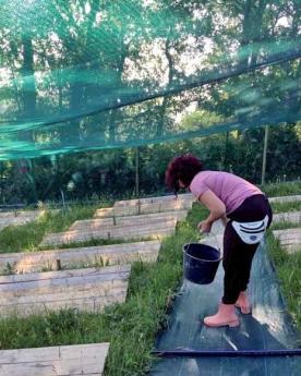 Lorra acompaña al emprendizaje en el sector agrario en Bizkaia
