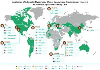Incrementos productivos Symborg en distintos tipos de cultivos