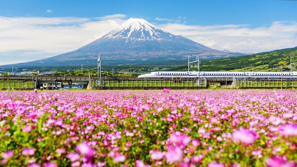 Fotografia Tren bala pasando junto al Monte Fuji