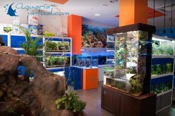 Tienda de Aquaria en Zaragoza