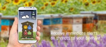 Irideon coordina proyecto financiado por la Unión Europea para mejorar la salud de las abejas