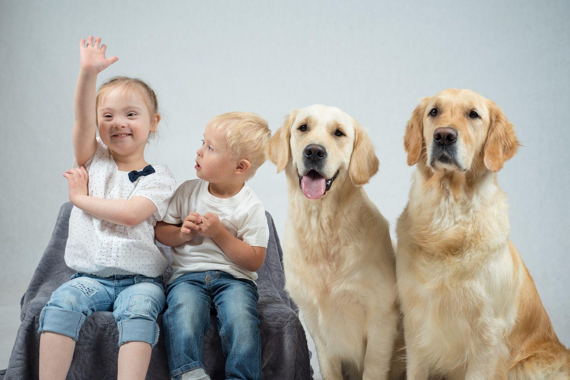 Foto de Zoetis, formación asistida con animales