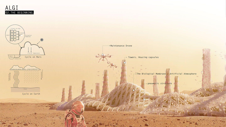 Foto de El proyecto Algi, diseñado por el IED Innovation Lab