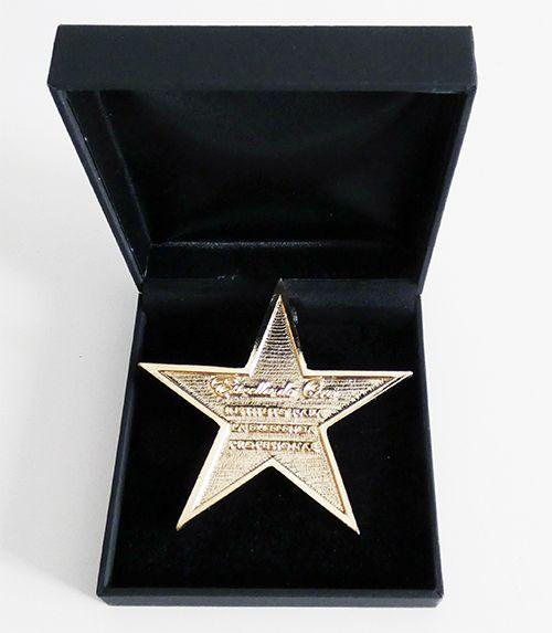 Fotografia Estrella de Oro a la Excelencia en Publicidad y Marketing
