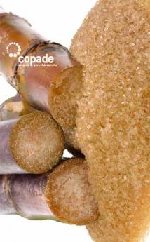 Fundación COPADE explica siete motivos para sustituir los azúcares refinados por panela