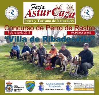 Concurso Perro de Rastro sobre Jabalí 'Villa de Ribadesella'