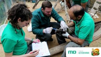 Escuela Veterinaria MasterD colabora con Oasis Park Fuerteventura