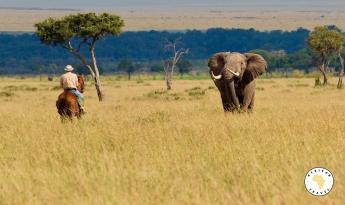 Un safari a caballo por Masai Mara: la propuesta de Africae Travel para este verano