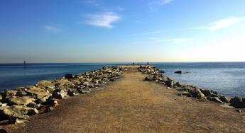 Barceloneta y Bogatell entre las playas mejor valoradas por los profesionales del Hotel Reding Croma