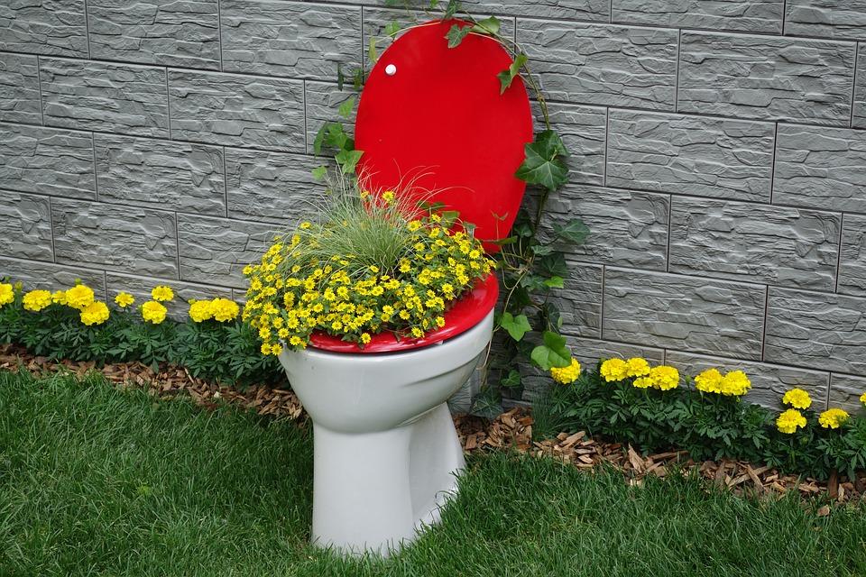 Foto de toilet-2304989_960_720