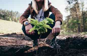 ONE OAK = Un producto, un árbol replantado