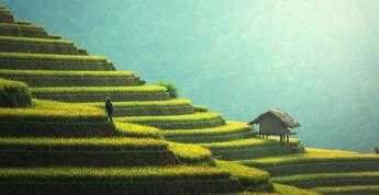 Materiales ecológicos para la construcción de viviendas sostenibles