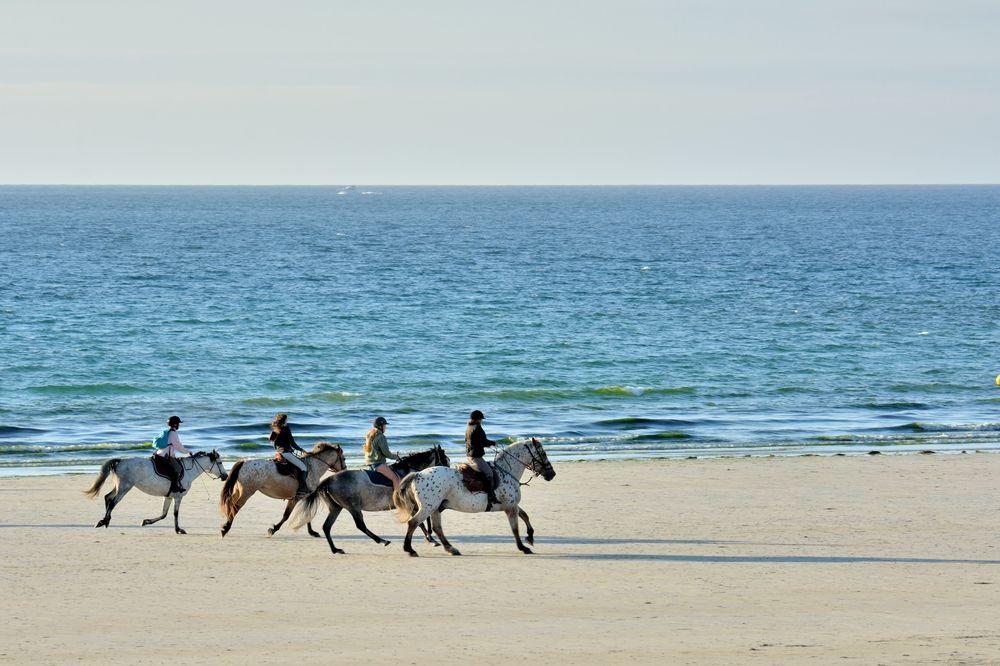 Foto de Experiencia Menorca a Cavall de Barceló Hamilton Menorca