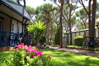 Las reservas online de alojamientos al aire libre, crecen un 40% respecto al verano pasado