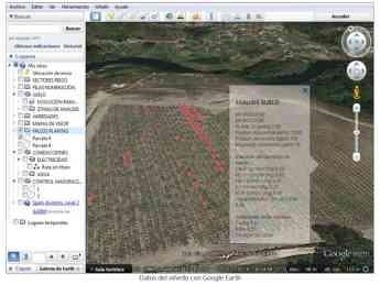 Foto de Datos del viñedo desde Google Earth