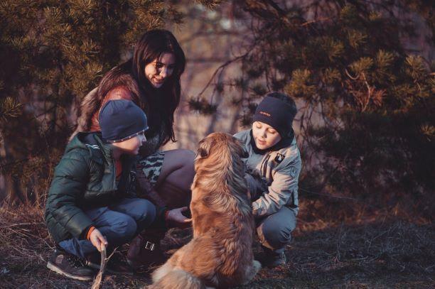 Foto de Crecer con perros, una terapia estupenda sobre todo para
