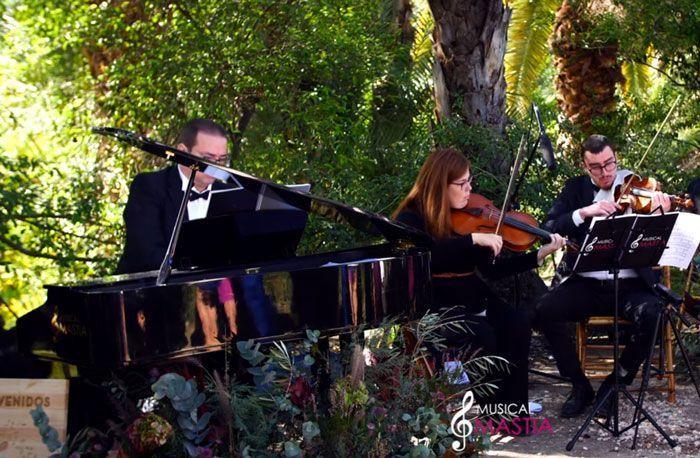 Fotografia Música para bodas