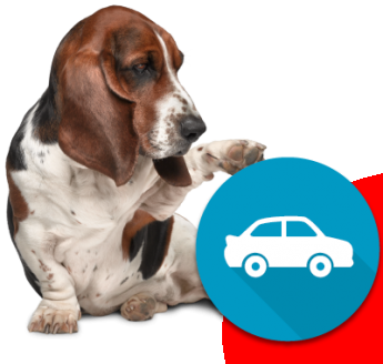 Rastreator ayuda a encontrar el seguro de coche en México a más usuarios cada día
